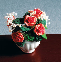 Binnen planten/bloemen