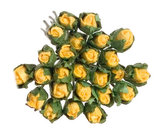 Bos rozen in de knop (24st.)_