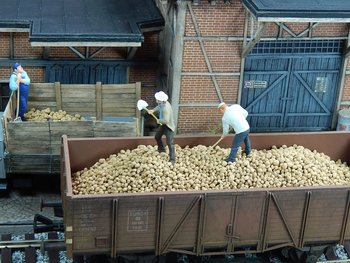 Partij losse aardappelen 1:43,5 - 1:50