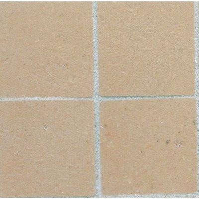 Plavuizen 13*13*2 mm vierkant, kleur Gualt