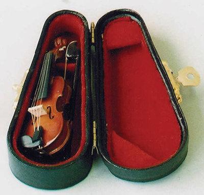 Viool, incl. zwarte koffer