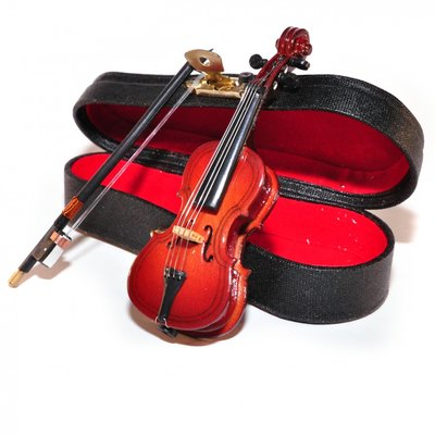 Cello, incl. zwarte koffer