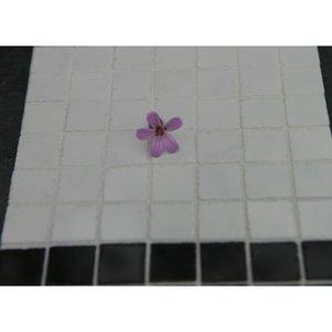 Echte keramische tegels, 10*10*2 mm, gewolkt wit