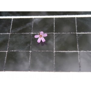 Echte keramische tegels, 19*19*2 mm, gemarmerd zwart