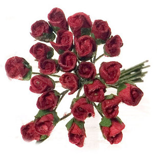 Bos rozen half-in-de-bloei (24st.)